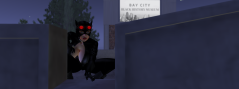 The Cat in Bay City 15 July 2016 01